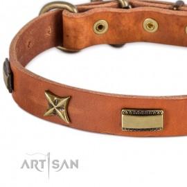 Sterne+Platten Mix Lederhalsband für Labrador von FDT Artisan