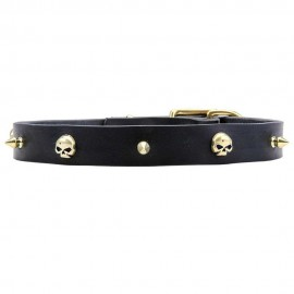 Leather Labrador Collar with Brass Skulls and Spikes