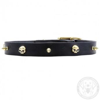 Designer Halsband aus Leder für Labrador mit Schädeln und Spikes