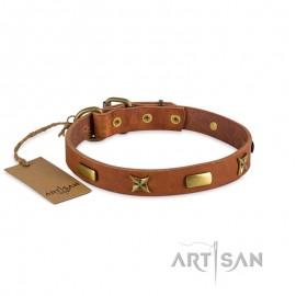 Enges Lederhalsband mit abgerundeten Platten und schönen Sternen für Labrador