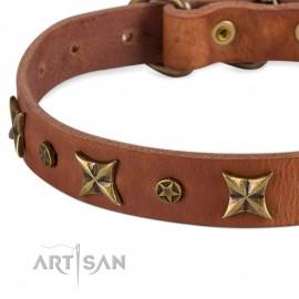 Labrador 25 mm Lederhalsband mit großen und kleinen Sternen