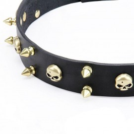 Brass Spiked Leather Labrador Collar with Skulls