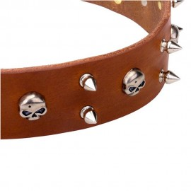 Wide Spiked Leather Labrador Collar with Skulls
