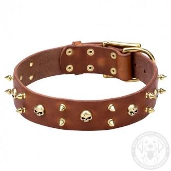 Ungewöhnliches und stilvolles Halsband aus Leder für Labrador