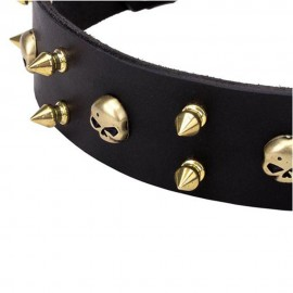 Spiked Leather Dog Collar Brass