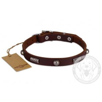 Schickes Lederhalsband 20 mm im Barock Stil