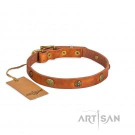 Edles Labrador Halsband aus Leder 20 mm