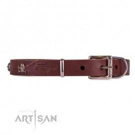 Fantastisches Lederhalsband 20 mm mit Messing Schmuck für Labrador