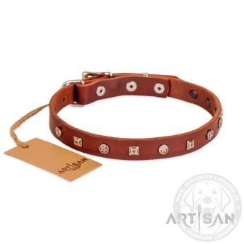 Ledernes Nietenhalsband mit Sterne für Labrador