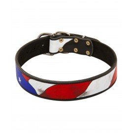 Hand Painted Leather Dog Collar American Pride