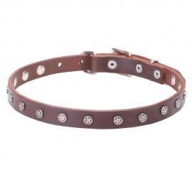 Enges Halsband aus Leder für Labrador mit chromierten Schmucken