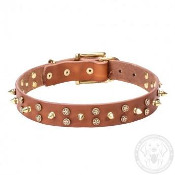 Bequemes Designer Halsband aus Leder für Labrador mit Messing Spikes