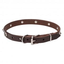 Exklusives Halsband aus Leder für Labrador mit originellem Design