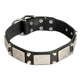 Leather Dog Collar with Nickel Decor