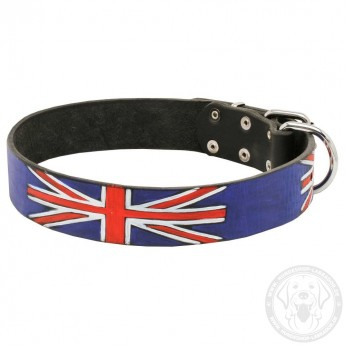 Leather Dog Collar - United Kingdom Pride