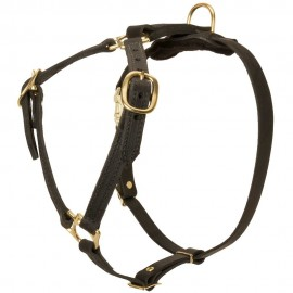 Labrador Harness of Two-Ply Leather for Walking and Tracking
