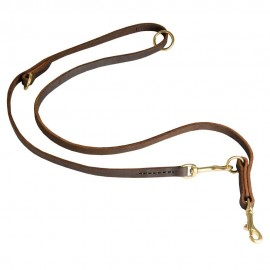 Stylish Leather Dog Lead for Labrador with Perfect Quality