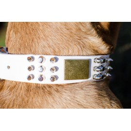 White Spiked and Studded Leather Dog Collar