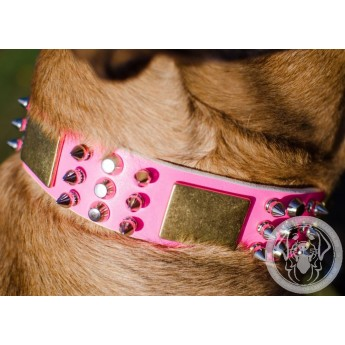 Pink Spiked and Studded Leather Dog Collar