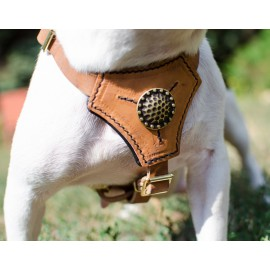 Luxury Puppy and Small Dogs Harness with Nappa Padding