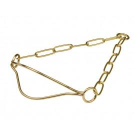Metall Halsband für Labrador-Ausstellungen, goldfarbiger Messing