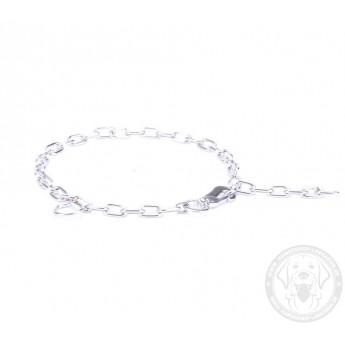 Herm Sprenger Kette Halsband für Labrador mit dem Karabinerhaken ... 1f8459b235cd4
