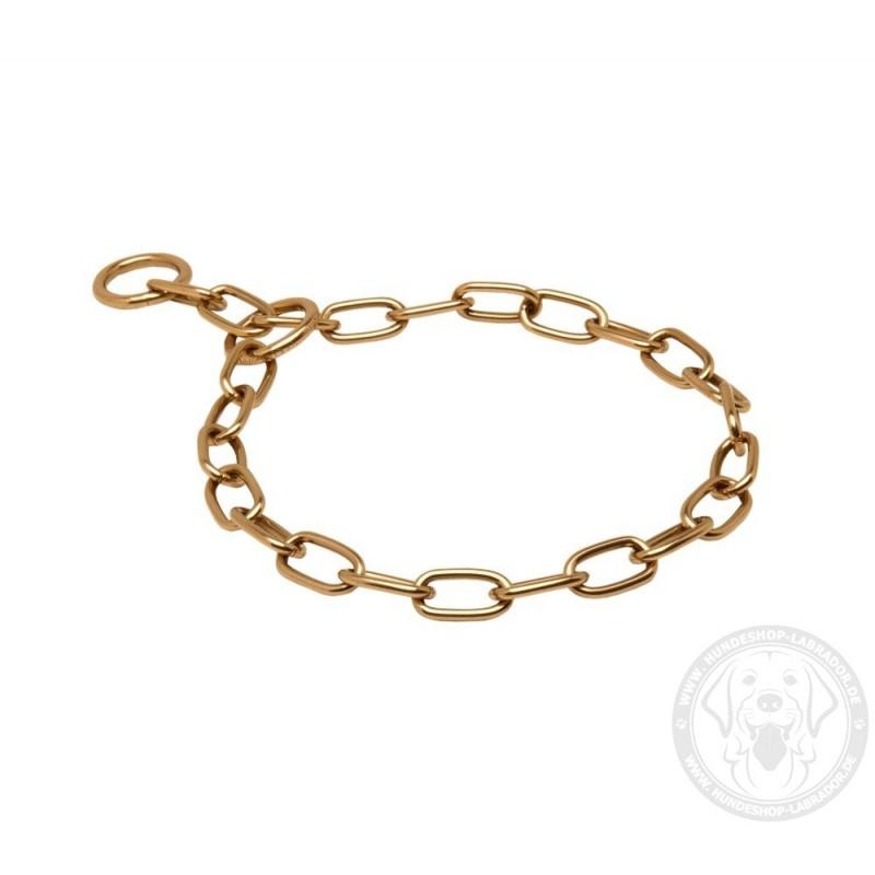 ... Curogan Kette Halsband für Labrador 53bac22b078e4