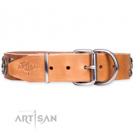 "Studded Dog Collar for Labrador  ""Age of Beauty"""