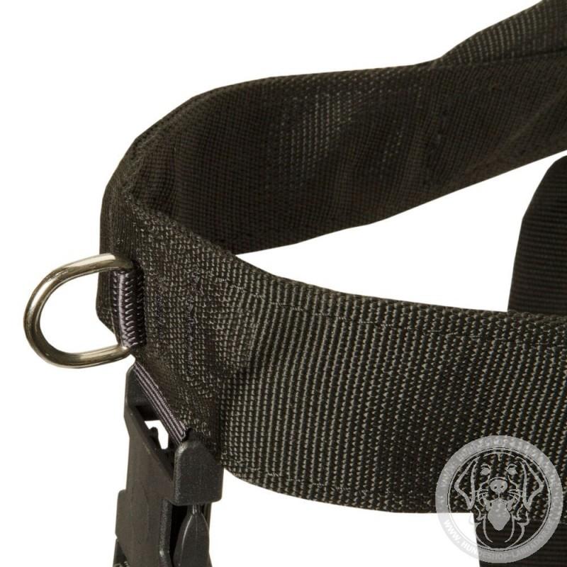 hundegeschirr nylon k9 sport f252r labrador hunde gratis