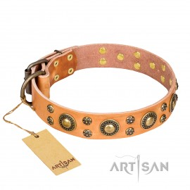 "Unique Artisan Dog Leather Collar ""Sophisticated Glamor"""