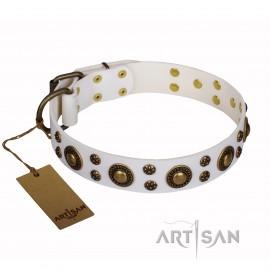 "Labrador Halsband aus Leder mit Messing Nieten ""Sophisticated Glamor"""