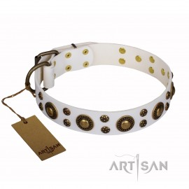 "Labrador Leather Dog Collar""Sophisticated Glamor"""