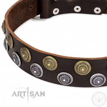 """Brown Artisan Leather Dog Collar """"Strong Shields"""""""