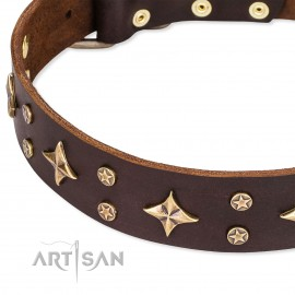 "Leather Dog Collar FDT Artisan ""High Fashion""  Brown"