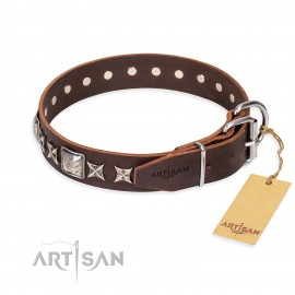 """Brown Leather Dog Collar with Silvery Studs """"Perfect Impression"""""""