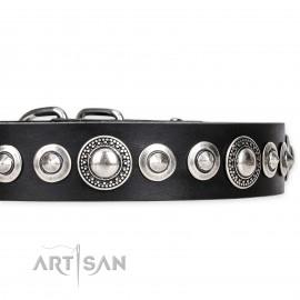 "Exclusive FDT Artisan Leather Dog Collar ""Strict Elegance"""