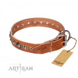 """Daily Chic"" Tan Leather Dog Collar   FDT  Artisan"