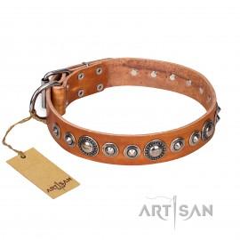"""Daily Chic"" Tan Leder Hundehalsband von FDT  Artisan"