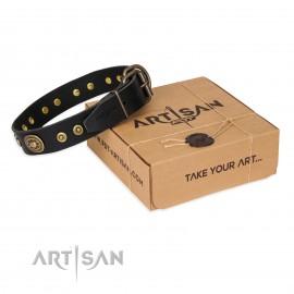 "Chic Labrador Leather Dog Collar ""Golden Radiance"" FDT Artisan"