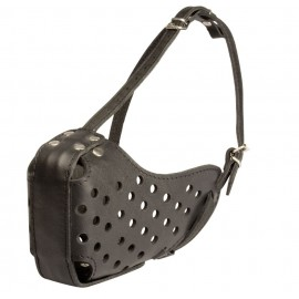 Strong Leather Muzzle for Labrador