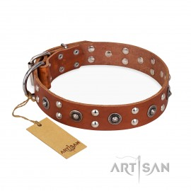 """Tan Leather Dog Collar Top-Quality """"Silver Elegance"""" by FDT Artisan"""
