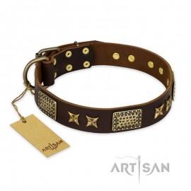"FDT Artisan incredible Leather Dog Collar ""Sparkling Bronze"""