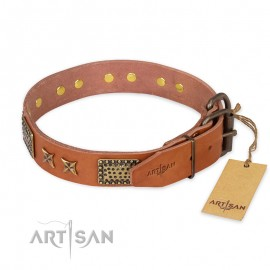 "Adorned Leather Dog Collar  Tan ""Cosmic Traveller"" for Labrad"