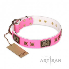 """Pink Tender"" FDT Artisan Leather Dog Collar with Old-Bronze Plates and Stars for Labrador"