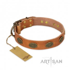 "Tan Leather Dog Collar adorable Style ""Magic Amulet"""