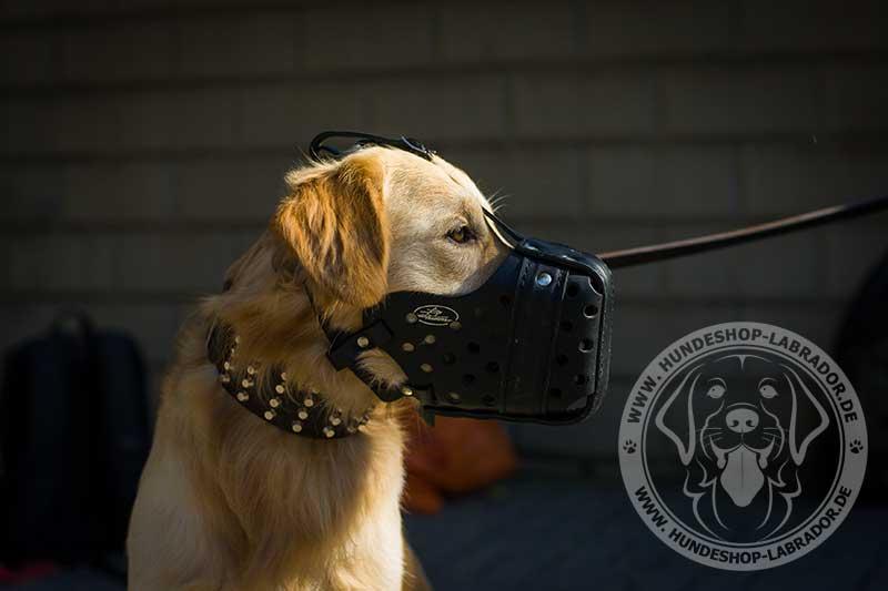Diensthunde Maulkorb