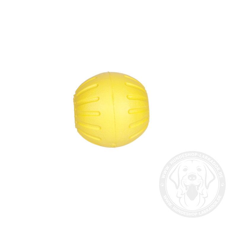 Ball fuer Hunde